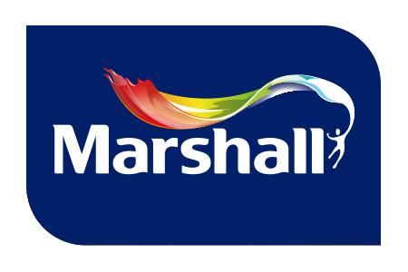 Marshall Boya ve Boya Katkıları